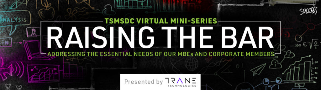 TSMSDC Raising the Bar Mini-Series